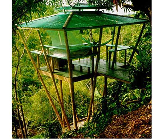 Bioconstruccion ambiente universal - Construccion de casas ecologicas ...